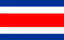 COSTA RICA - HAND WAVING FLAG (MEDIUM)